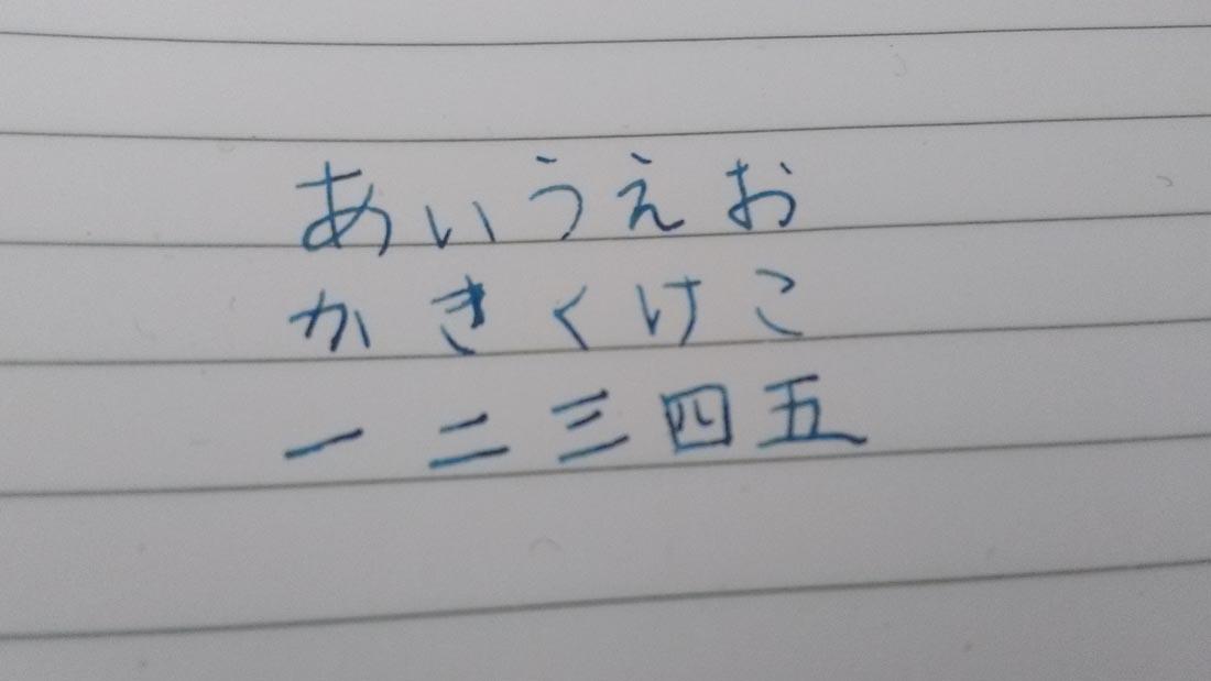 sailor 万年筆 細字F